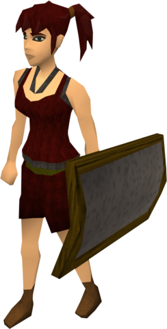 File:Iron sq shield equipped old.png