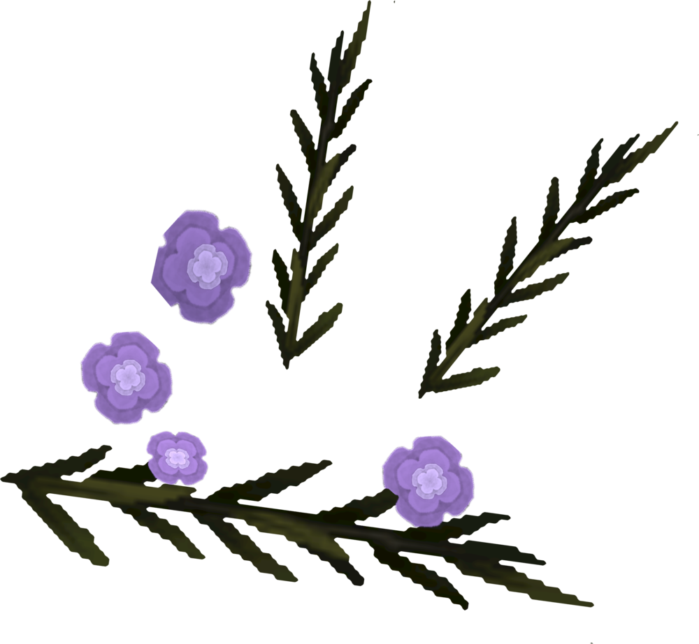 File:Lowland heather detail.png