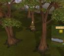 Enchanted key (miniquest)