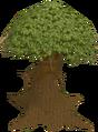 Spirit tree old.png