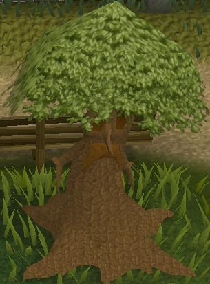 File:Spirit tree old.png