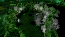 Swamp gas in Lumbridge Swamp Cave