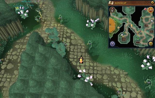 File:Scan clue Zanaris north-west of gates to market area.png