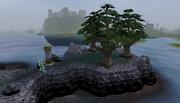 Daemonheim trees barrier