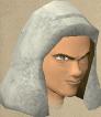 Mercenary mage chathead