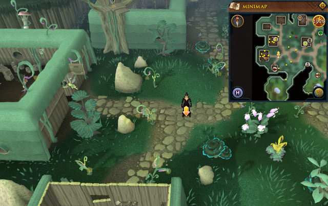 File:Scan clue Zanaris east of general store.png