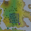 Penwie location.png