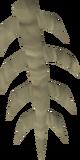 Muspah spine detail