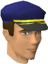 File:Customs Sergeant chathead.png