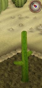 File:Cactus4.png