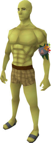File:Yellow skin equipped.png