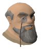File:Captain Lawgof chathead old2.png