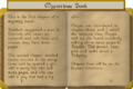 Mysterious book pt3.png