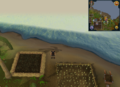 Compass clue Brimhaven east of spirit tree.png
