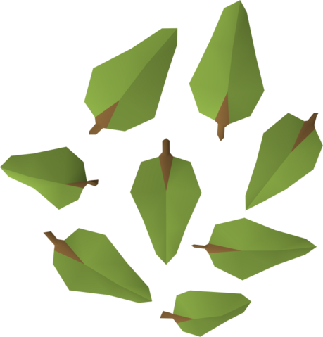 File:Leaves (oak) detail.png