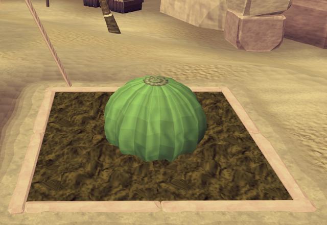 File:Potato cactus4.png