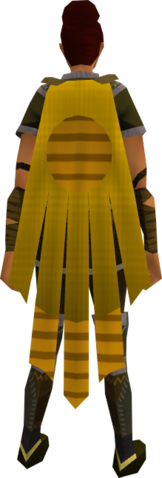 File:Team-18 cape equipped.png