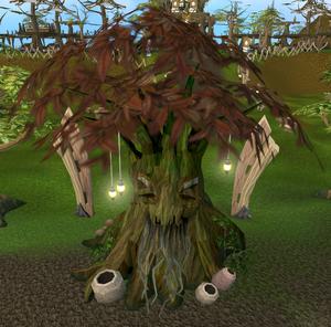Elder spirit tree