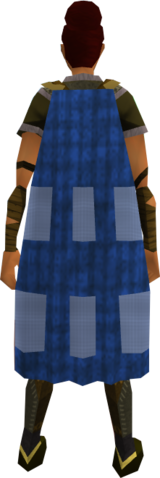 File:Team-24 cape equipped.png