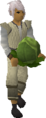 Cabbage (April Fools) equipped.png