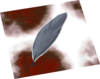 Blood-soaked feather detail