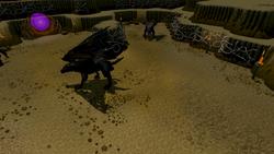 Evil Chicken's Lair