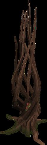 Plik:Achey tree.png