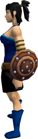 File:Studded leather shield equipped.png