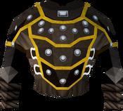 Studded body (g) detail
