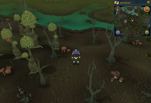 Scan clue Haunted Woods east of fairy ring