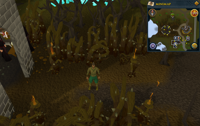 File:Compass clue Falador east of Dark Wizard's Tower.png