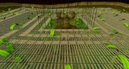 Jungle demon arena