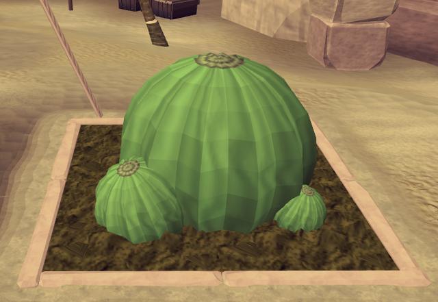 File:Potato cactus6.png