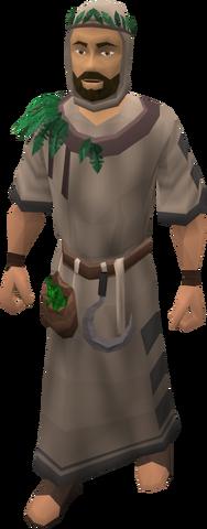 File:Wandering alchemist.png