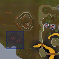 Fairy ring ALP location