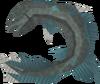 Raw salve eel detail