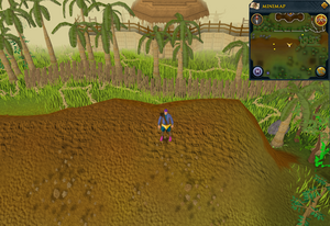 Scan clue Kharazi Jungle on ridge south of the bank