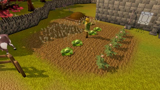 File:Sinclair garden.png