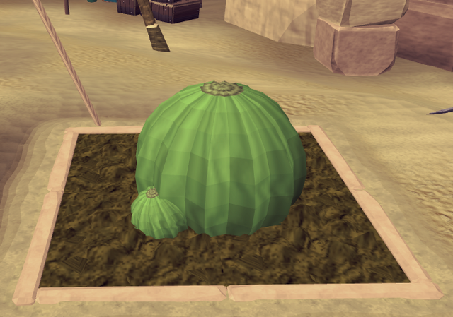 File:Potato cactus5.png