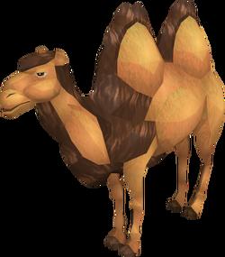 Cart Camel