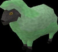 Sick looking sheep 2