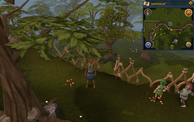 File:Compass clue Tree Gnome Stronghold south of the cobalt skillchompa hunter area.png