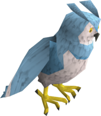 Saradomin owl pet
