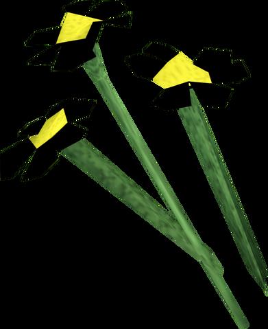 File:Black flowers detail.png