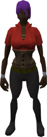 File:Retro doublet and bodice.png
