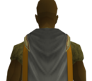 Pay-to-play Runecrafting training