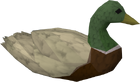 Duck old