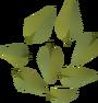 Leaves (magic) detail