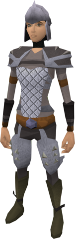 File:Steel helm equipped.png