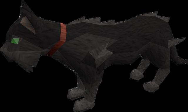 File:Wily cat (black) pet.png